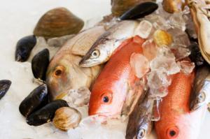 Fischwochen | Fischwochen